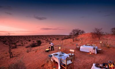 Conservation Africa News – Back To Africa: A New Completely Private, Exclusive Tour